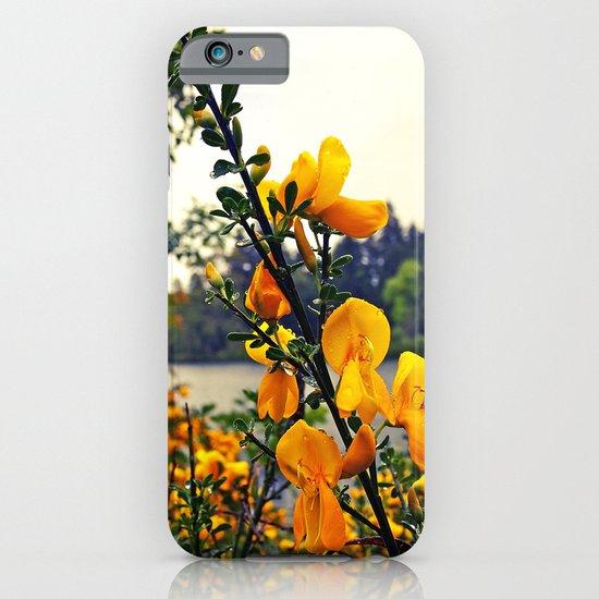 Rainy day flowers iPhone & iPod Case