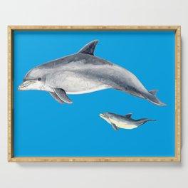 Bottlenose dolphin blue background Serving Tray