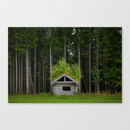 Trees On A Cabin (Norway) Canvas Print