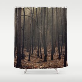 Winter magic forest Shower Curtain