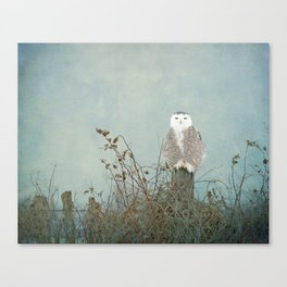 You Are Too Beautiful Canvas Print
