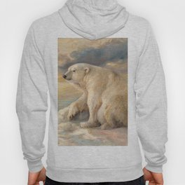 Polar Bear Rests On The Ice - Arctic Alaska Hoody