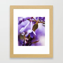 Lilacs and Raindrops Framed Art Print