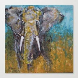 African Elephant Bull Canvas Print
