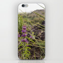 The Road Goes Ever On and On iPhone Skin