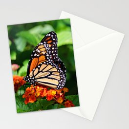 Wings of Nature Stationery Cards