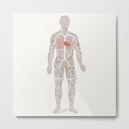 Virgil the Anatomical Man Metal Print