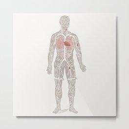Virgil the Anatomical Man Metal Print