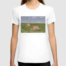 Hay bales on a hillside T-shirt
