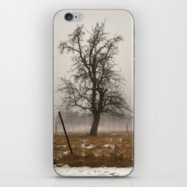 Tree Stands Tall iPhone Skin