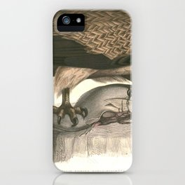Haliaeetus leucoryphus Hardwicke iPhone Case