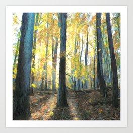 Backlit Forest Art Print