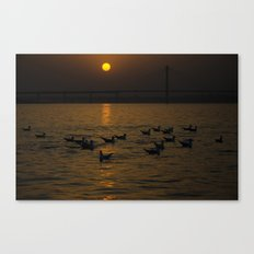 painting a golden picture...  Canvas Print