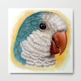 Blue quaker parrot realistic painting Metal Print