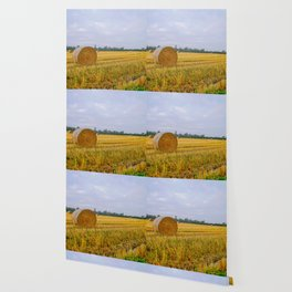 Hay bales in the Lomellina countryside during autumn Wallpaper