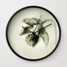 Coastal Cotton Tree - Hibiscus Wall Clock