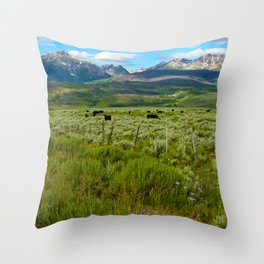 Colorado cattle ranch Throw Pillow