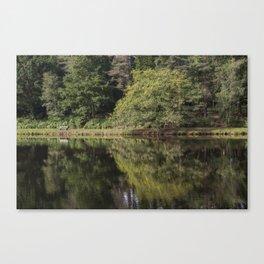 Summer Reflections - 1 Canvas Print