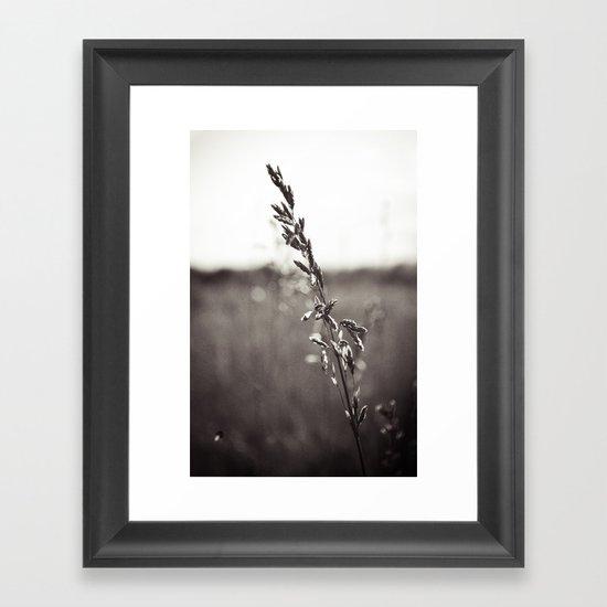 Prairie Wild Framed Art Print