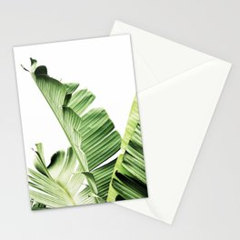 Banana leaves, Leaf, Plant, Modern, Wall Art, Tropical Stationery Cards