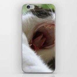 *rawr* iPhone Skin