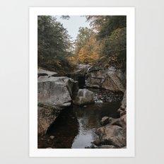 New England Fall I Art Print