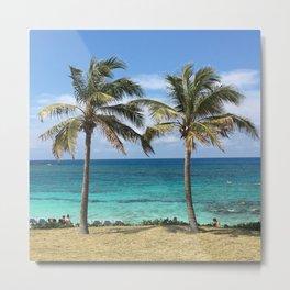 Bahama Palms Metal Print