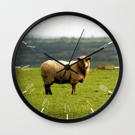 Solitary Sheep Wall Clock