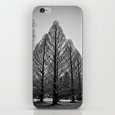 winter session iPhone & iPod Skin