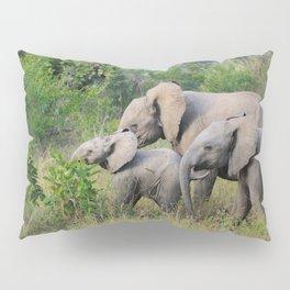 Elephant Family Pillow Sham