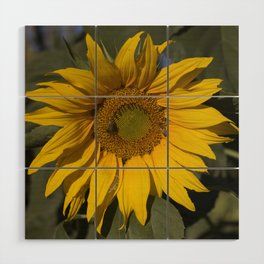 Lively Sunflower Wood Wall Art