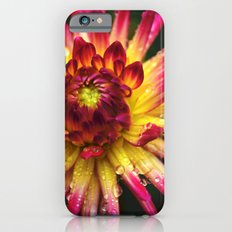 Dahlia Photography Close Up Macro photography Slim Case iPhone 6s