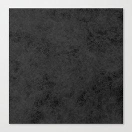 Black suede Canvas Print