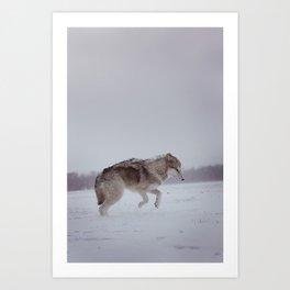 Logan's First Snow Art Print