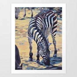 Plains Zebra Art Print