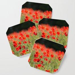 Poppy Meadow Coaster