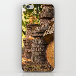 Wood pattern in the forest iPhone Skin