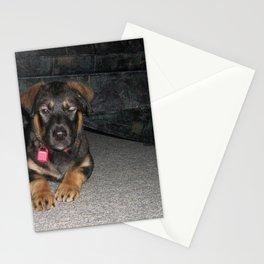 Koda Stationery Cards