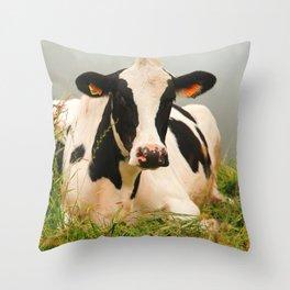Holstein cow facing camera Throw Pillow