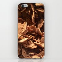 oklahoma iPhone & iPod Skins featuring Oklahoma Gypsum  by UMe Images