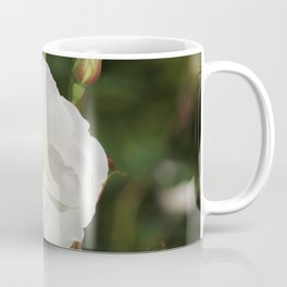 White Flowers and Buds by Reay of Light Photography Coffee Mug