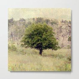 One Tree Metal Print