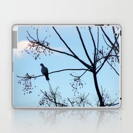 Sunrise Bird Laptop & iPad Skin