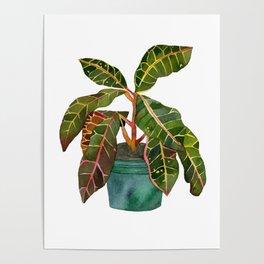 Eternal Houseplant Poster