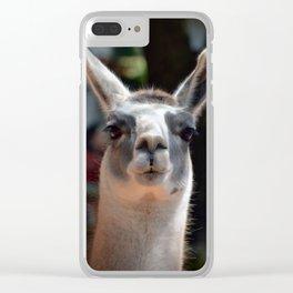 Lama Clear iPhone Case