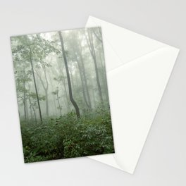 Smoky Mountain Summer Forest - National Park Nature Photography Stationery Cards