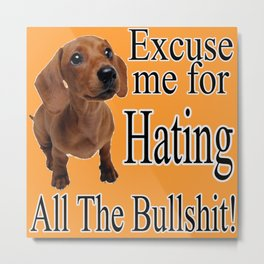 Excuse Me For Hating All The Bullshit Metal Print