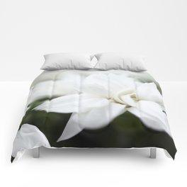 Snow White Flowers on a Dark Background #decor #society6 #buyart Comforters