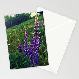 Quaker Bonnets Stationery Cards