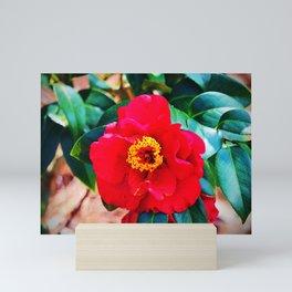 Rich Red Camellia Mini Art Print